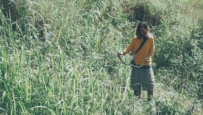 """Trải nghiệm cắt cỏ """"bắt buộc"""" ở Nhà Gió 2 - Ảnh: Quyen T Luu"""