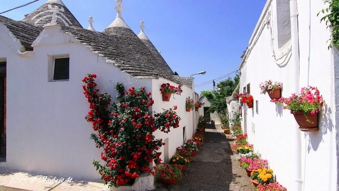 Ngôi làng Alberobelo ngập tràn sắc hoa rực rỡ