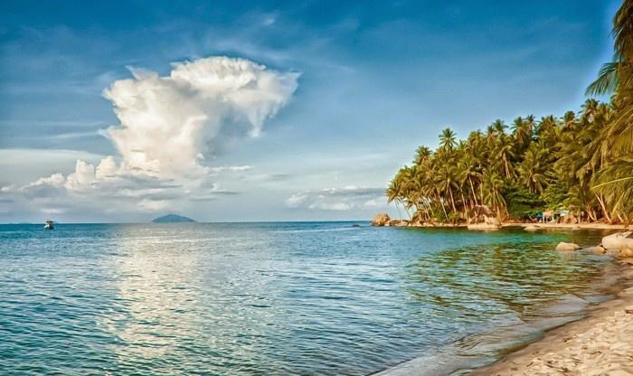 Hàng dừa ngả bóng theo bờ biển quanh đảo Hải Tặc