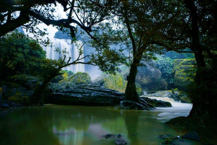 Là những mảng sắc màu của thiên nhiên hoang dại - Ảnh: Robin Nghia
