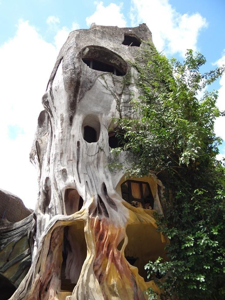 Crazy houses - Bên trong gốc cây khổng lồ là một căn phòng rất đẹp