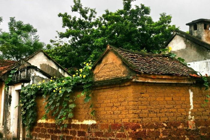 Bức tường đá ong ở Đường Lâm