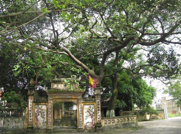 Cổng tam quan Đền Cùng phủ rêu phong theo thời gian