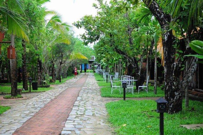Những hàng cây xanh mát dọc lối đi