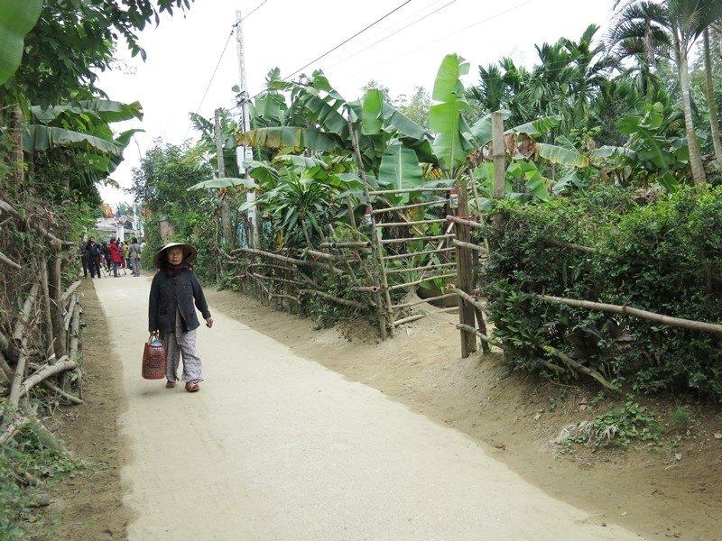 Hàng chè xanh dọc những con đường quanh làng