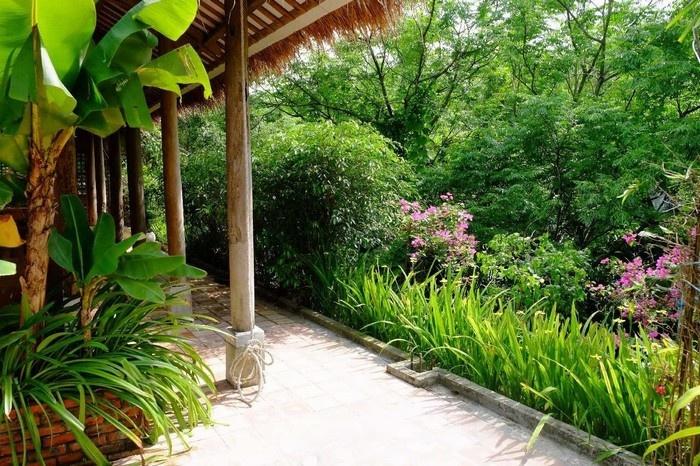 Khung cảnh xanh tươi hút hồn du khách