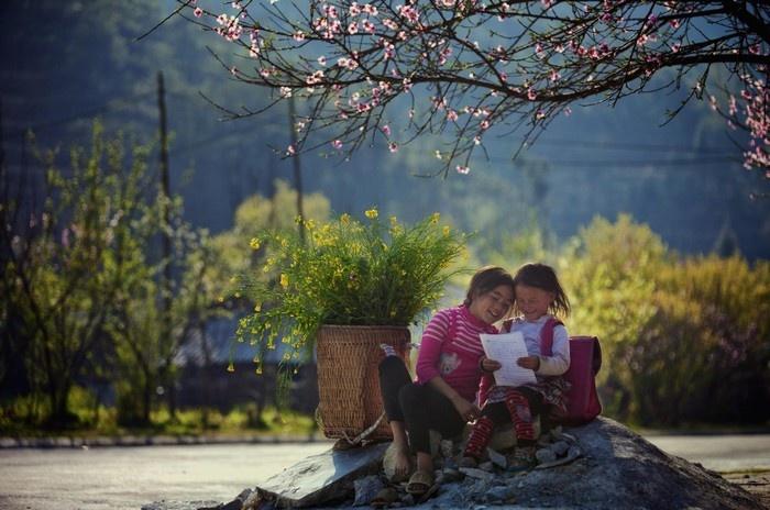 Lòng người Hà Giang cũng dịu ngọt hơn