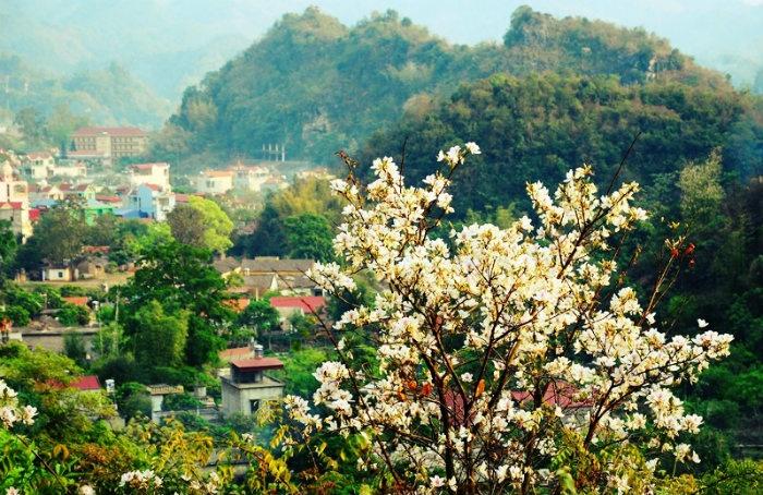 Mộc Châu - Khiến đất trời trở nên đẹp lạ