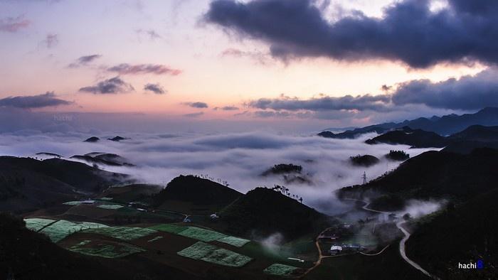 Những ruộng cải Mộc Châu trắng xanh nhỏ bé khuôn mình trong thảo nguyên bát ngát sương mây tạo nên một bức tranh thiên nhiên hài hòa và bình yên.