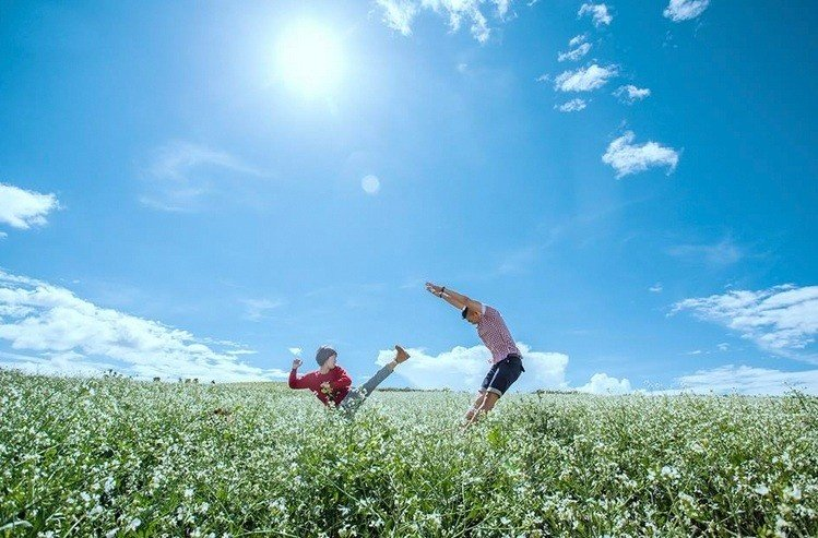Những khoảnh khắc ngọt ngào nơi cánh đồng cải trắng