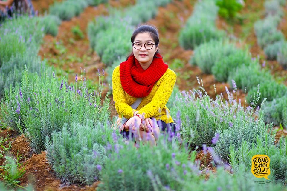 Du khách tham quan vườn hoa Lavender dù còn rất sớm