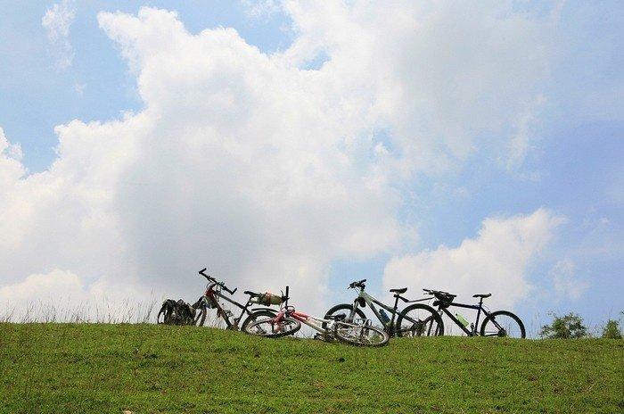 Đồng cỏ xanh mướt bình yên khiến du khách du lịch Hưng Yên thích thú