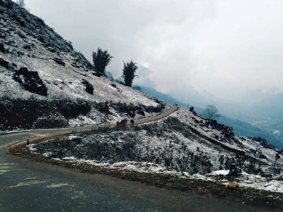 Tuyết rơi ở bản Lao Chải, Sa Pa