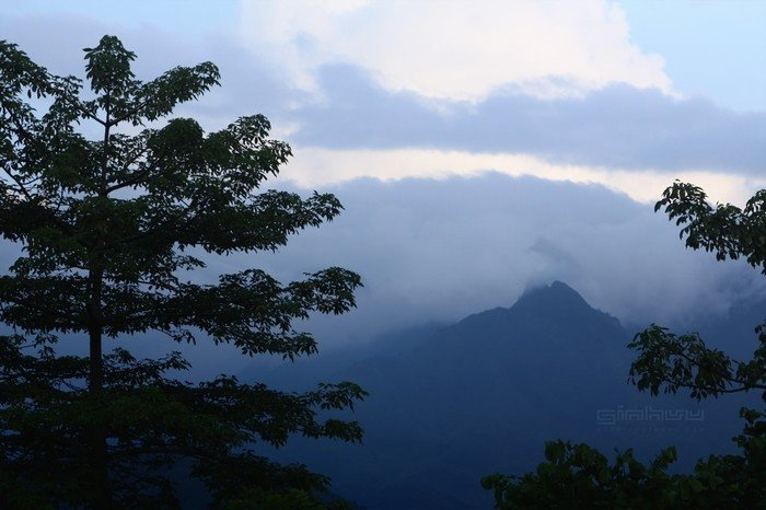 Mây mù mờ ảo lúc hoàng hôn ở Suối Giàng khiến bao người ngẩn ngơ