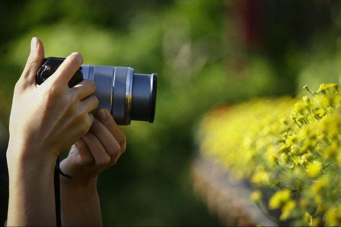 Về làng hoa Tân Quy Đông mải mê săn ảnh