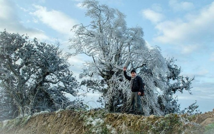 Du khách thích thú với bông tuyết trắng tinh trên Mẫu Sơn