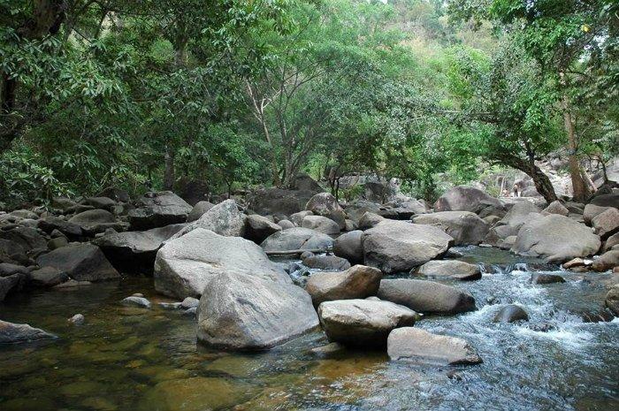 Chốn rừng núi Ông hoang sơ, thanh vắng, rất đỗi yên bình