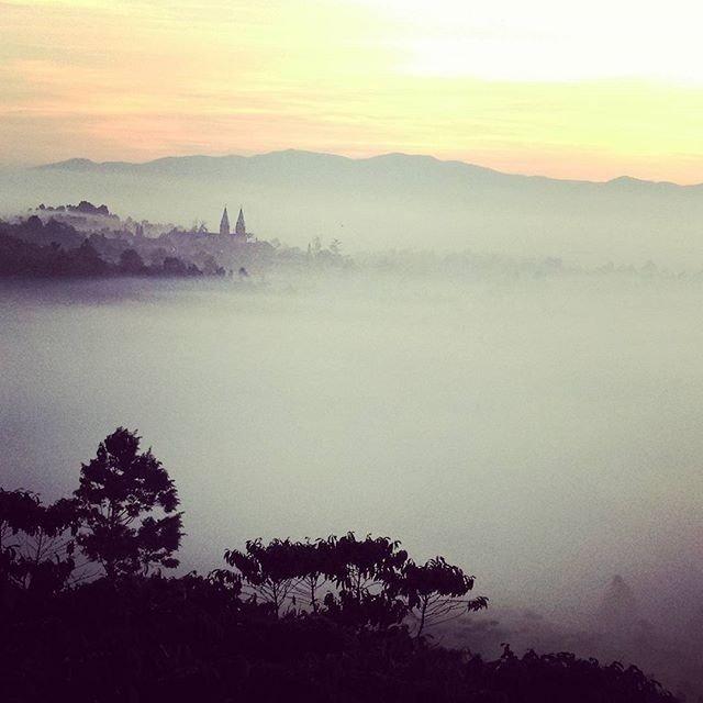 Thành phố sương mù Bảo Lộc trên Instagram