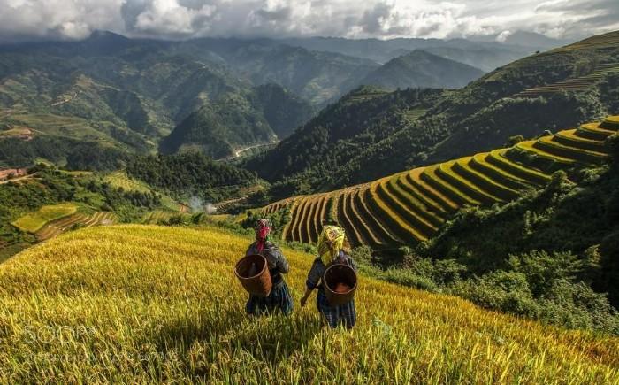 Có một Việt Nam bình yên nơi rẻo cao - Ảnh: Jakkree Thampitakkul