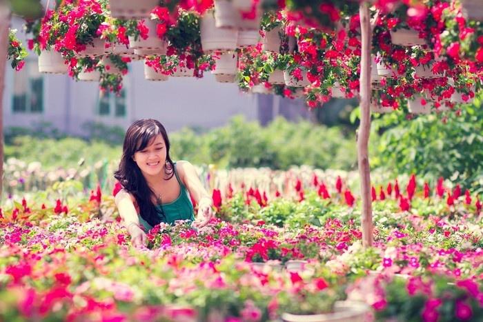 Nên người ta mới thích thẩn thơ dạo bước trong khu vườn Tân Quy Đông đầy hoa lá