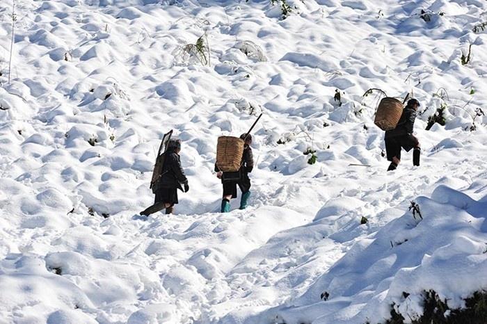 Sapa tháng 1 còn có những đợt tuyết phủ dày cả con đường