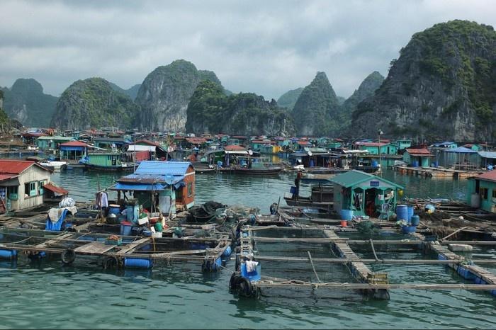 Những đầm phá nuôi hải sản