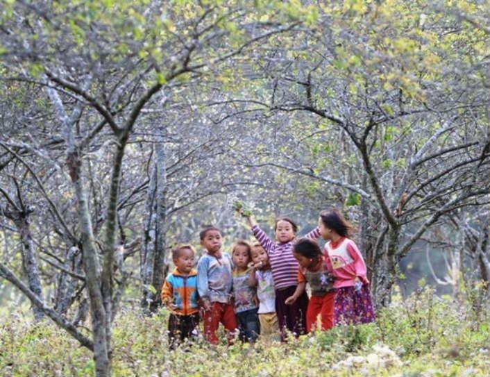 Mùa xuân Tây Bắc cuốn hút khách du lịch