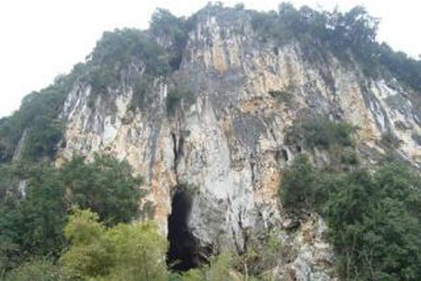 Hang thắm làng
