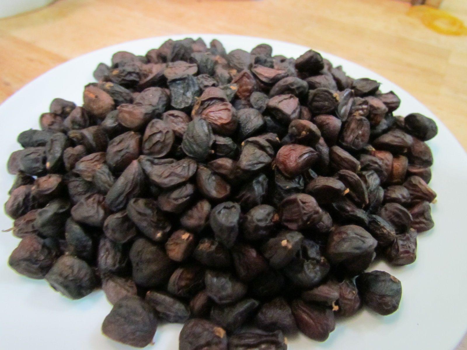 Hạt dổi - Hương vị đặc trưng của núi rừng Tây Bắc