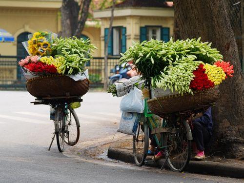 Gánh hàng hoa duyên dáng giữa trời đông Hà Nội