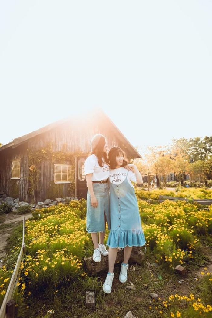 Chơi gì ở thảo nguyên hoa Long Biên - Hà Nội