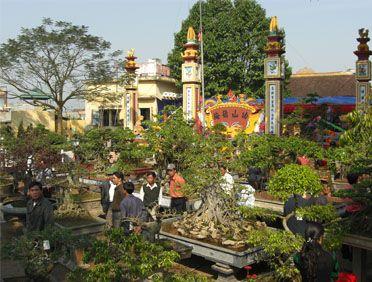 Thưởng hoa lễ hội Vị Khê