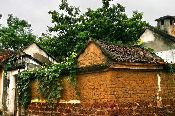 Mảng tường đá ong cũ kỹ theo dòng chảy thời gian