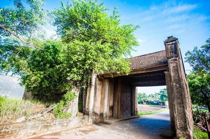 Vùng trời bao la xanh ngắt, hiền hòa ở làng cổ Đường Lâm