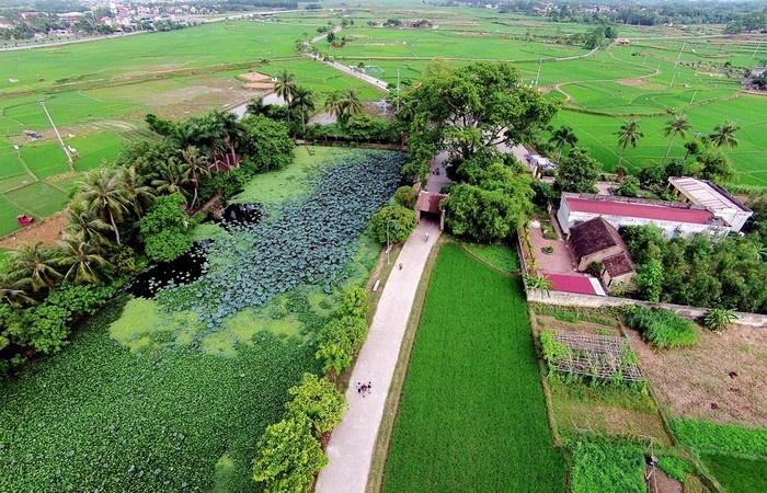Khung cảnh giản dị, mộc mạc và yên bình ở một góc làng cổ Đường Lâm