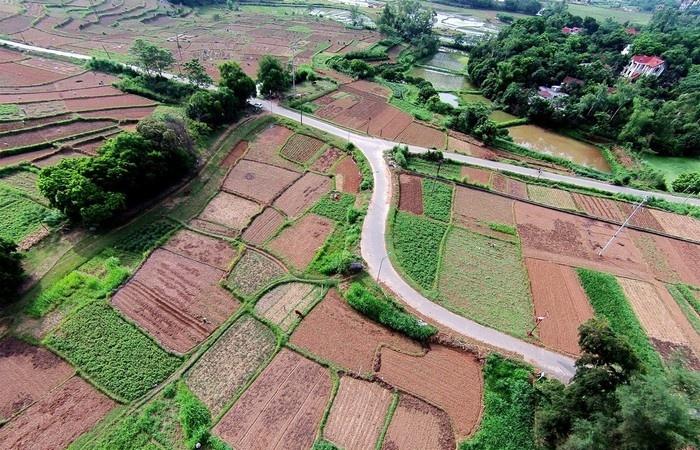 Ngõ đường chính dẫn vào làng cổ Đường Lâm