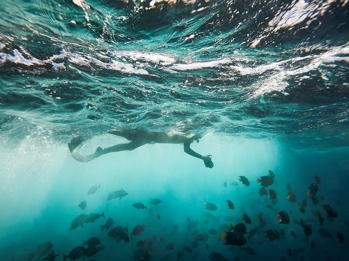Thả mình vào lòng đại dương bao la