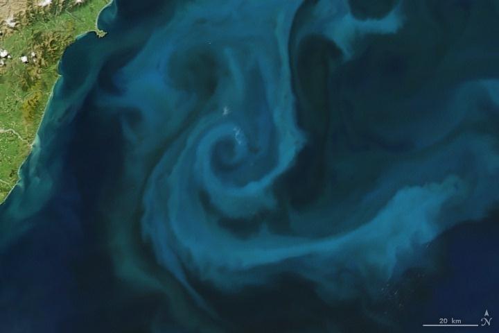 Chữ E: Ngày 25/10/2009, thiết bị MODIS trên vệ tinh Aqua của NASA đã thu lại được hình ảnh trên về một loài sinh vật phù du ngoài khơi New Zealand trông giống hình chữ E.