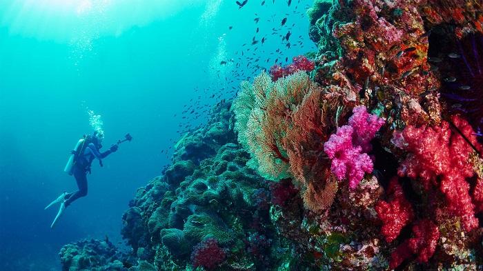 Đốn tim với đẹp kỳ diệu của quần đảo Similan Thái Lan
