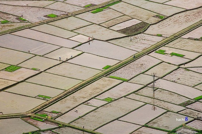 Ốc đảo nhỏ nổi bật của đồng bào Thái giữa thung lũng Mai Châu