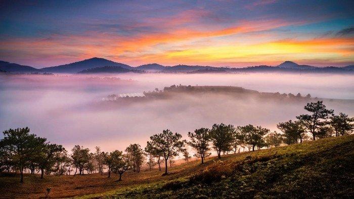 Sương giăng khắp lối mộng mơ