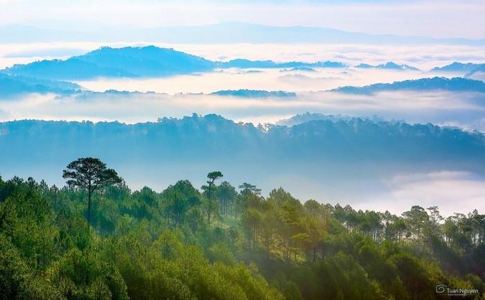 Cảnh sắc Hòn Bồ trong sương trắng đẹp hơn bao giờ hết