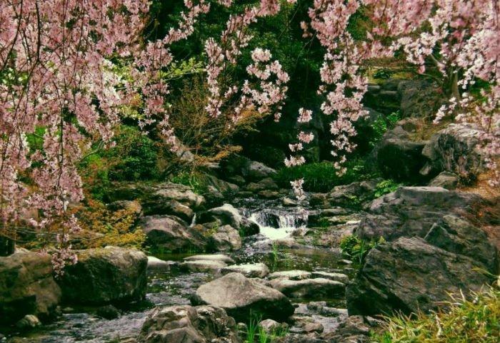 Thác Mai đẹp như tranh vẽ - Ảnh: Thác Mai mùa xuân/Deviantart
