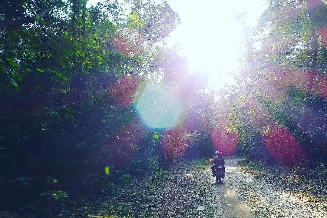 Nắng vàng trải đều trên cùng đường đến thác Mai - Ảnh: @kn.vo