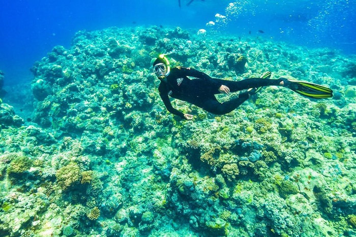 Thành phố Cairns Úc và những trải nghiệm không thể quên