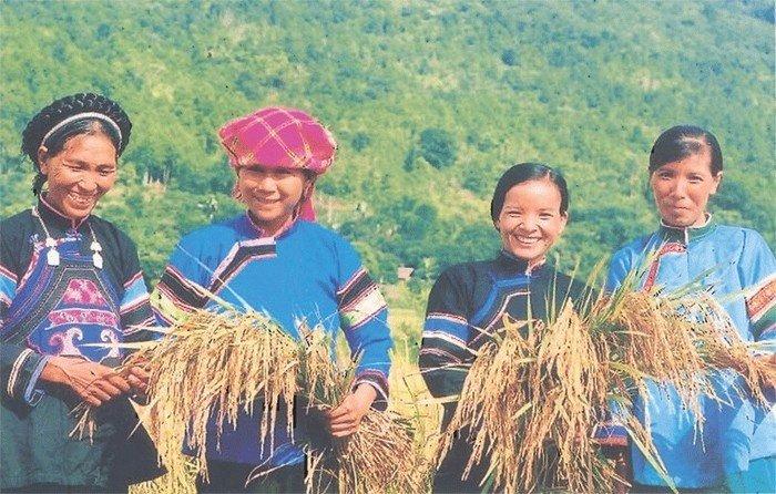 Chàm và xanh da trời là hai màu chủ đạo trong phục trang của dân tộc Phù Lá