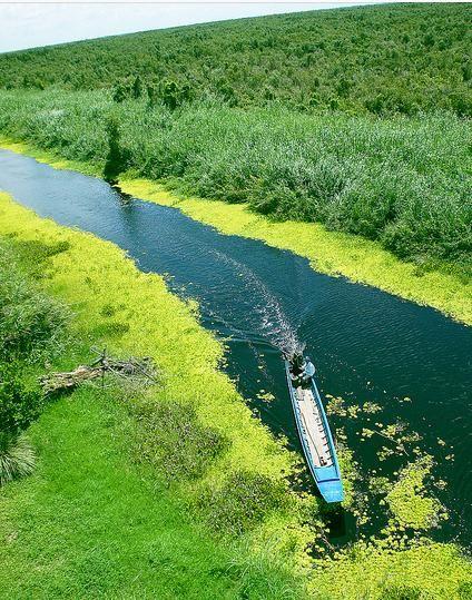 Khám phá rừng nước đỏ U Minh Thượng