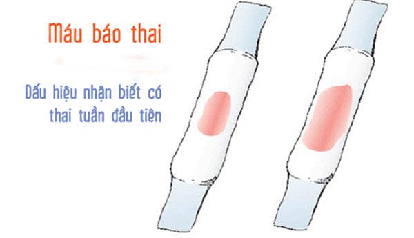dau-hieu-thu-thai-thanh-cong-1