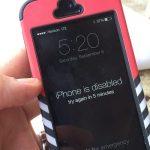 iphone-5s-bi-vo-hieu-hoa