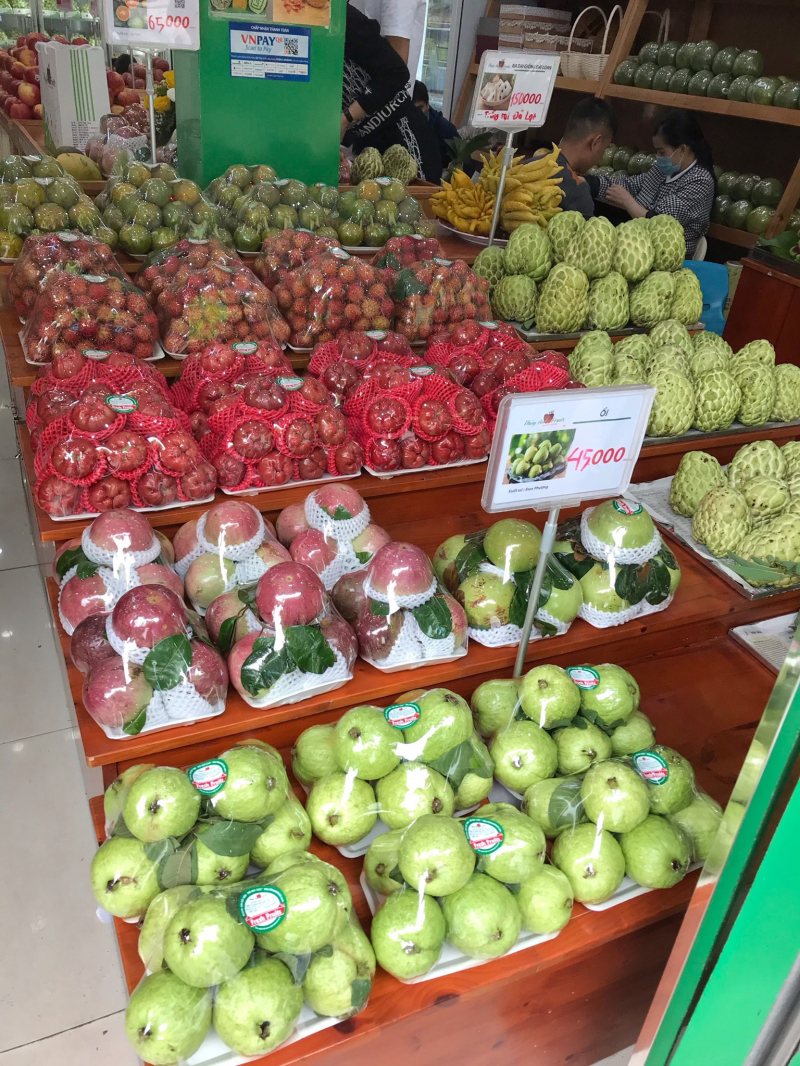 Thủy Anh Fruits